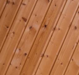 spruce-316002